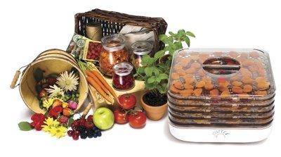 Best Affordable Food Dehydrator
